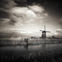 Kinderdijk...VIII by denis2