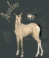 Avalon Ref by hestur
