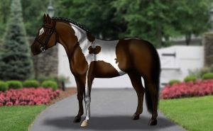 Broadmare: ISI Queen Bee by Decorum100