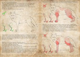Wolf Tutorial - Page 7 and 8 by ProfelisAurata