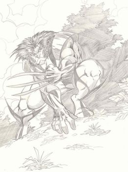 another Wolverine pic by LakLim