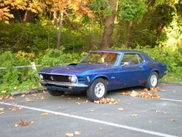 My Mustang in Fall by Bspacewiz2