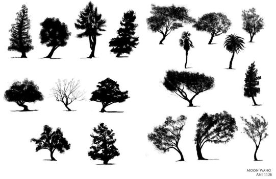 20 Trees by whisperpntr