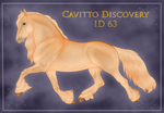 Cavitto Discovery 63 by ThatDenver