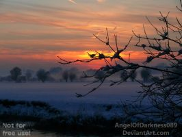 And so ends a beautiful winter day... by AngelOfDarkness089