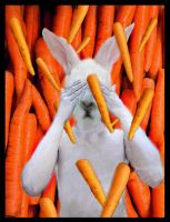 Temptation: carrots on my mind by Yrouel