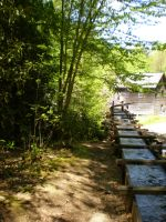 Mingus Mill and Flume by zachn