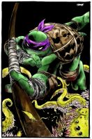 TMNT: Donatello Colors by garnettrules21