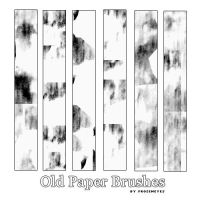 Old Paper Grunge Brushes by AlenaJay