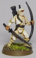 Storm Shadow by FraterSINISTER