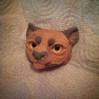 Feline head sculpt by birbdog