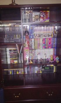 Video Game/Anime collection by elvenbladerogue