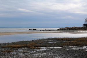 Old Mill Beach 02 04 16 d by Wilcox660