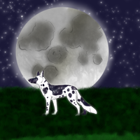 Moonlit Night by Alcemistnv