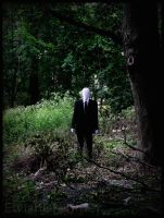 Slender: Always Watches by Eryn-Marie