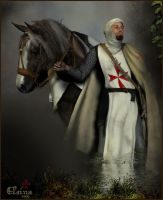 The Knight Templar by Elsina