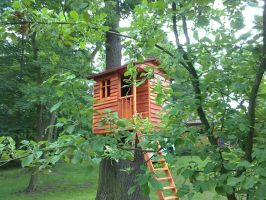 Treehouse by handwerker2-0