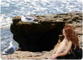 Solace Among The Seagulls by VisualPoetress