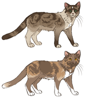 Cat Adopts SOLD by fringedfox