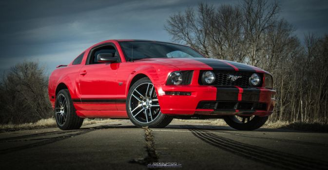 2006 Ford Mustang GT by joerayphoto