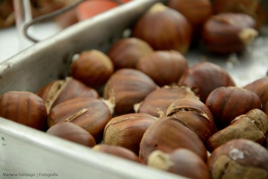Chestnuts by FunkyMarS