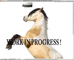 Work in Progress: by MiddysGraphics