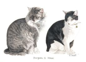 Bergen and Maxi by Seaff