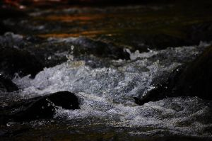 Rocky Waters by LittleKidd