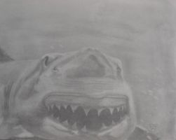Great White by RONSARTNOW