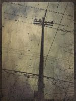 iPhoneography,   Flock in the Grid by Gerald-Bostock