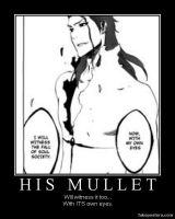 Aizen's Mullet Can See by Ichi-BanOtakuSML8500