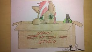 Nexus' Box by IceColdWulf