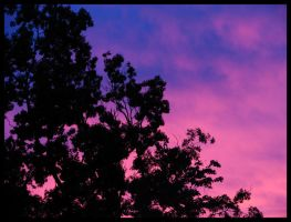 Purple and Magenta Sunset by St0DaD