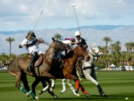 The Perfect Polo Shot by ThePerfectEquestrian