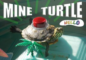 MINE TURTLE (quick version) by LuzbeldAuvergne
