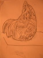 Rooster Gesture Drawing 2 by fantreasureplanetljs