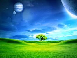 tree ground by jas-one