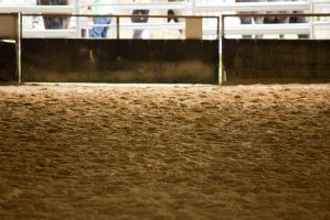 STOCK - Friesian Show 2012-2 by fillyrox