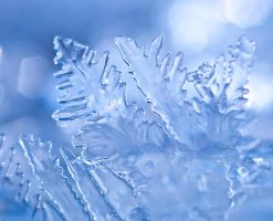 Ice ice baby by pqphotography