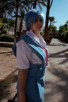 Ayanami Rei by Thara-Wood