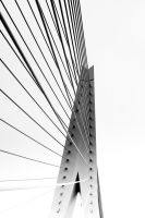 Bridge by nvfl600D