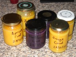 Apricot, Blueberry and Orange Curd by Bisected8