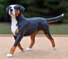 Greater Swiss Mountain Dog by Tephra76