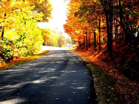 October Road by deep-south-mele
