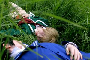 sleeping in the gras - 1 by LittleSara
