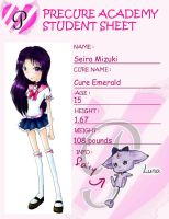 PA Student Sheet Seira by Chancetodraw