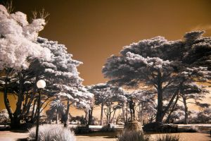 Autumn in IR II by fazz1977