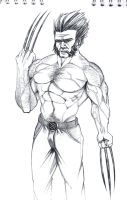 Wolverine by AugustoGarcia