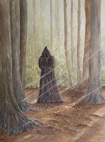 Cloaked Figure by SueMArt