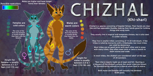 Chizhal species reference sheet by Eyenoom